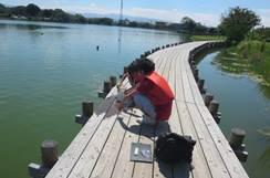 水辺での水質調査