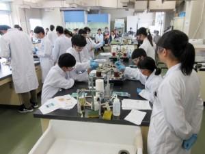 体験授業(物質工学科)の様子